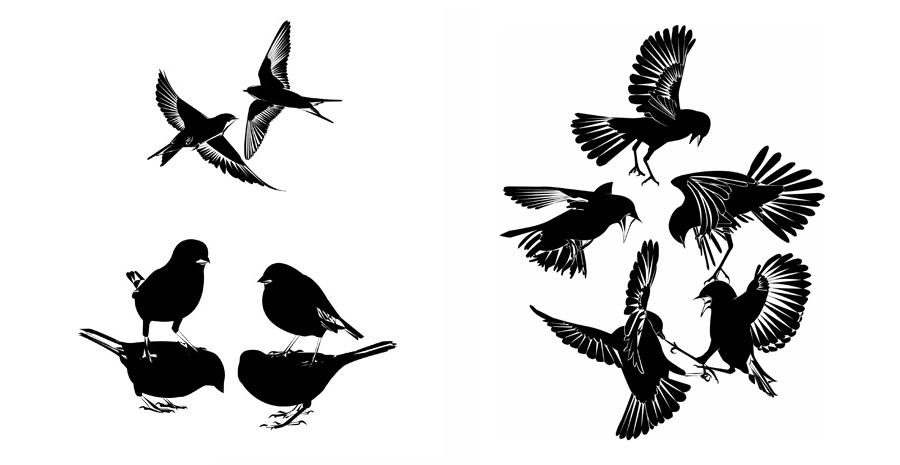 Birdstackheader2